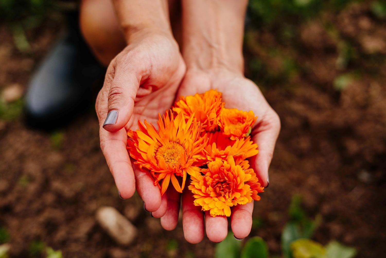 Susanne Langmuir holding calendula flowers